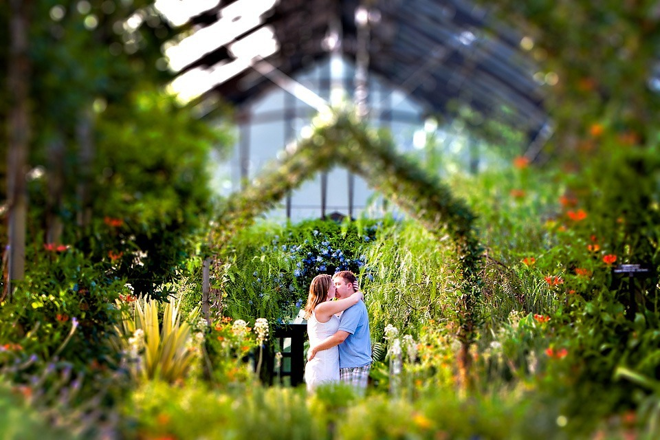 Longwood Gardens - Engagement Session