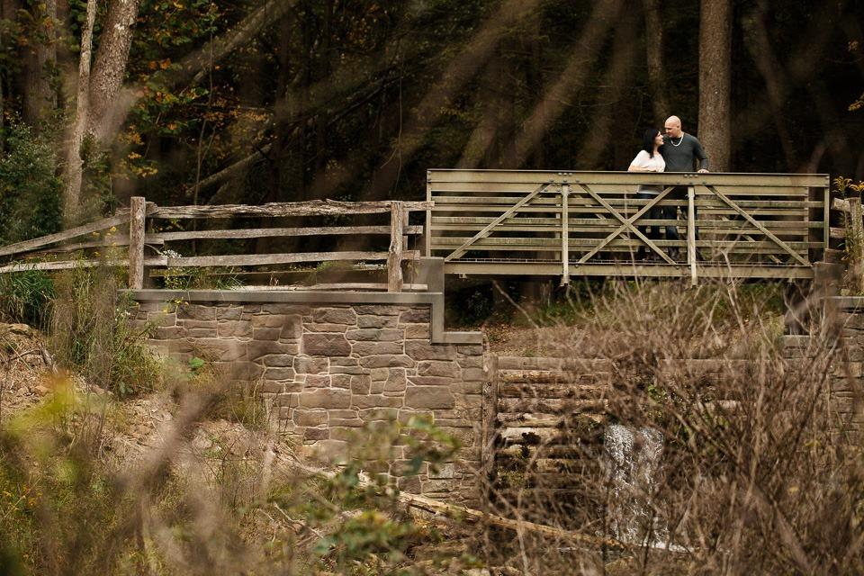 Little Buffalo State Park Engagment Photographers