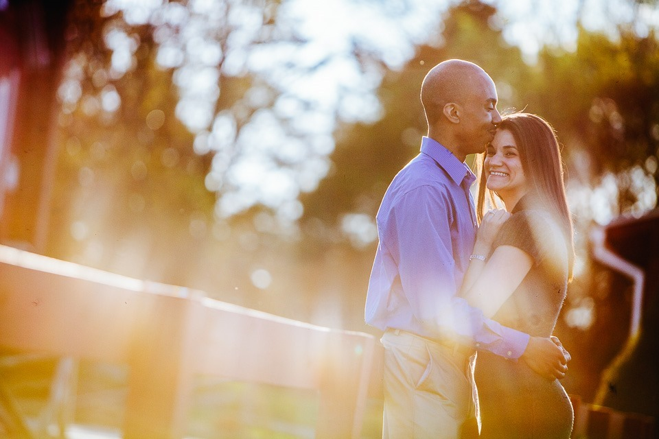 Lower Allen Park Engagment Photography